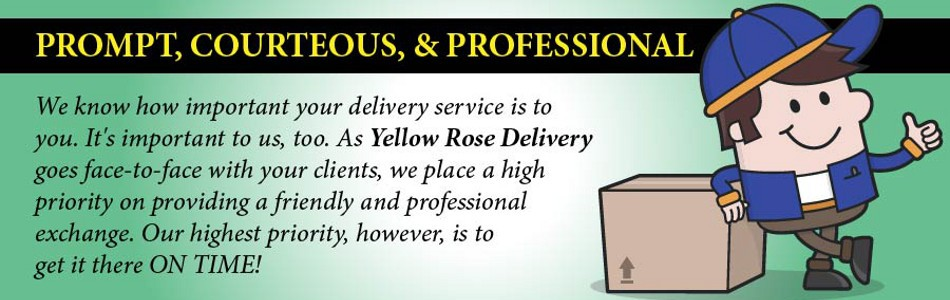 Professional Delivery Services